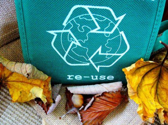Hoe kun je milieuvriendelijk ondernemen als bedrijf
